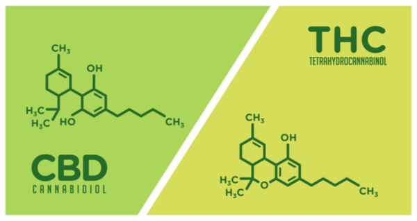 CBD vs THC molecule comparison