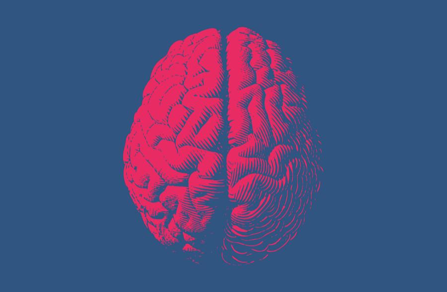 cbd cte concussion brain blog