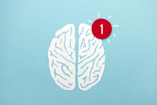 alert on anxious brain
